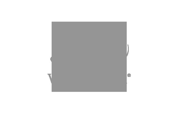 Logo brand cliente Lady Venezia