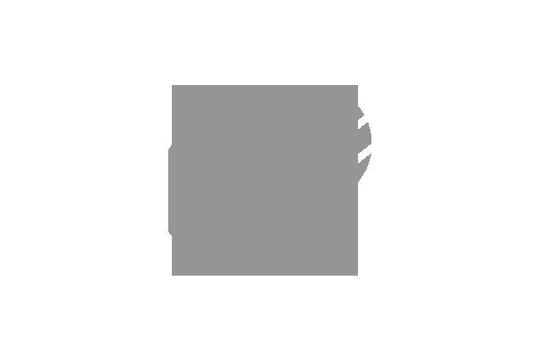 Logo brand cliente GDS Lighting