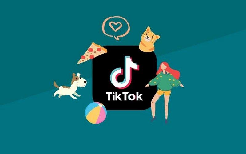 TikTok guida consigli successo